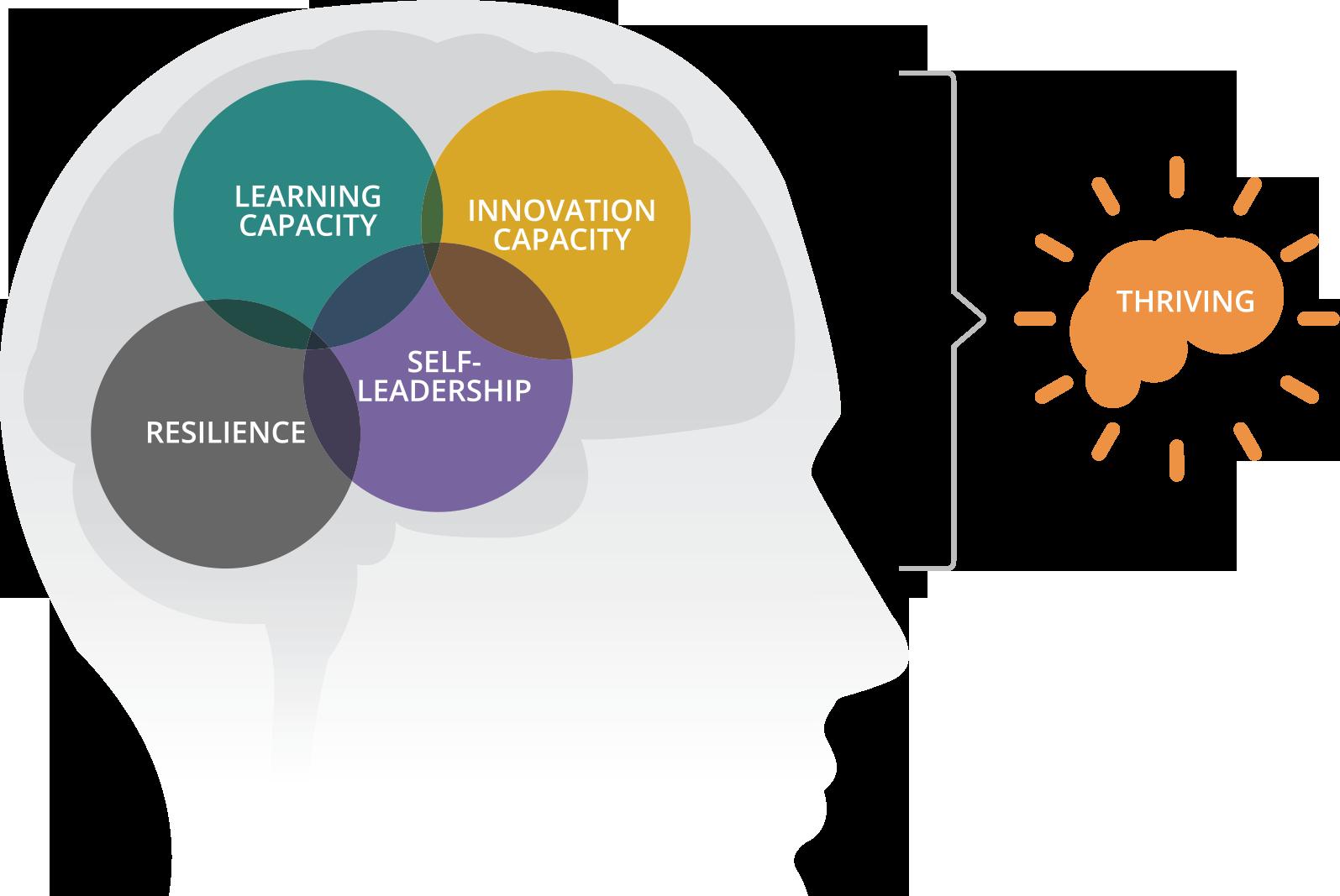 Sense To Solve - Neuroscience Thriving